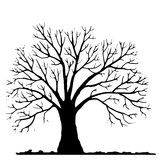 Tree without leaves silhouette Royalty Free Stock Images