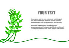 Tree and leaves and space for text Stock Photography