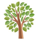Tree with leaves vector. Tree with leaves. On a white background tree with green foliage. Take care of trees stock illustration