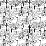 Tree without leaves on white background. Seamless floral pattern Stock Image
