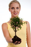Tree of life. Young woman holding a bonsai tree, isolated on white. Concept: new life Stock Photo