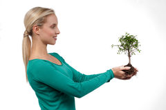 Tree of life. Young woman holding a bonsai tree, isolated on white. Concept: new life Stock Photos