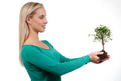 Tree of life. Young woman holding a bonsai tree, isolated on white. Concept: new life Stock Photography