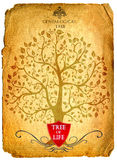 Tree of life Royalty Free Stock Photos