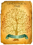 Tree of life Stock Photography