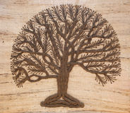 A tree of life Stock Image