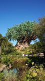 The Tree of Life at Animal Kingdom Stock Photography