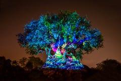 Tree of Life Awakenings in Christmas season at Animal Kingdom 144.