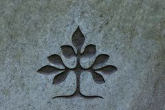 Tree of life carved into stone surface Stock Image