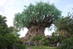 Tree of life with carved trunk in the Disneyworld Stock Images