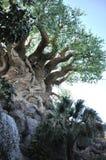 Tree of Life in Disney Animal Kingdom Stock Photo