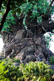 The Tree of Life at Disney's Animal Kingdom Stock Images
