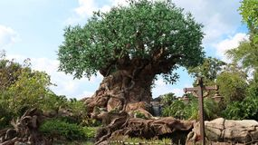 The Tree of Life is in the Disney World in Orlando. The tree of life in the kingdom of animals in the Disney World in Orlando, Florida royalty free stock photography