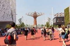 Tree of life expo Royalty Free Stock Photo