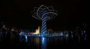 TREE OF LIFE Royalty Free Stock Photo