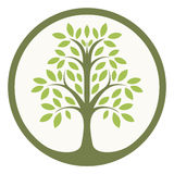 Tree of life. Green tree of life in a circle Stock Photo
