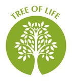 Tree of life. In green circle Stock Image