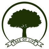 Tree of life Royalty Free Stock Image
