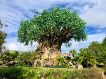 Tree of Life Stock Image