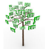 Tree of Life - Natural Growth and Progress in Modern Living Stock Image
