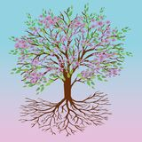 Tree of life spring version. A tree of life with pink blossom and green leafs on a pink blue gradient background Stock Photography