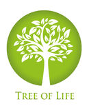 Tree of Life. Round green icon with a silhouette of a tree Stock Images