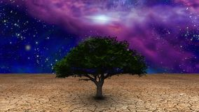 Tree of Life. Surrealism. Green tree in arid land. Galactic disk in night sky royalty free illustration