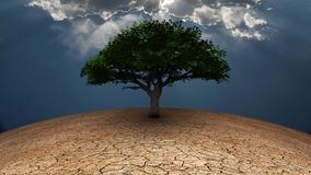 Tree of life. Surrealism. Green tree in arid land. Light beams comes through the clouds vector illustration