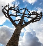 Tree of life. The Tree of Life is a timeless symbol of our connections to everything around us stock photo
