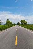 The tree line in the country road Stock Image
