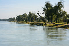 Tree Line Mohajir Branch Canal. Treeline over Mohajir Branch Canal bank – Northern Punjab Pakistan. A peaceful and unique shot taken from head bridge where Stock Photos