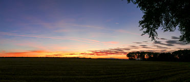 Tree line during sunset - Panorama Picture Royalty Free Stock Image