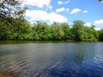 Tree line and Water rippling Speed River Guelph, Ontario Canada Wellington County natural Canadian Beauty. Tree line and Water rippling Speed River Guelph royalty free stock image