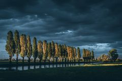 Tree lined artificial canal for fields irrigation at sunset light royalty free stock images