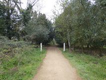 Tree Lined Avenue@the manor 3. The gateway to a different place stock photo
