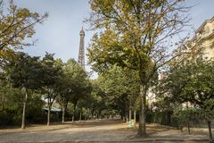 Tree-lined avenue in Paris, France in autumn. With a view to the Eiffel Tower over the treetops and historical townhouses Royalty Free Stock Image