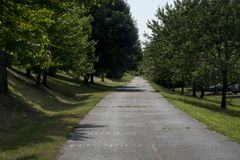 Tree lined bike path royalty free stock photos