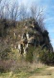 Tree-lined Bluffs Stock Fotografie
