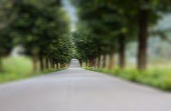 Tree lined blur Stock Photos