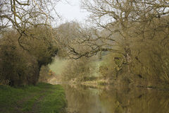 The tree lined Canal. Stock Photography