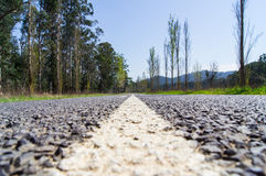 A tree lined country road near Marysville, Australia. Stock Images