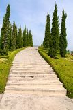 Tree lined countryside path Stock Photography