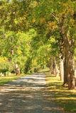 Tree lined gravel road. A beautiful, green tree lined gravel road in a quiet cemetery with Autumn foliage Stock Photo