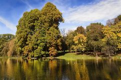Tree lined lake or pond Stock Image