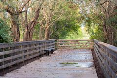 Nature Trail with Bench Royalty Free Stock Image