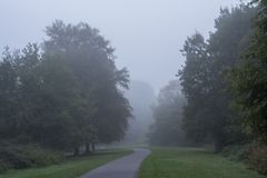 A tree lined path in the mist on Southampton Common royalty free stock photos