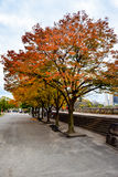 Tree lined paths in Osaka Castle Park. Reflecting the craftsmanship and order of the castle life Stock Photos