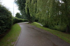 Tree lined pathway with grass verge. Royalty Free Stock Image
