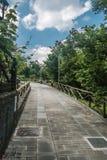 Tree-lined Pedestrian Walkway Stock Photo