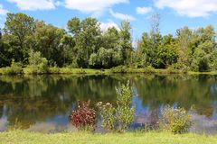 Tree lined pond in the summer Stock Photo